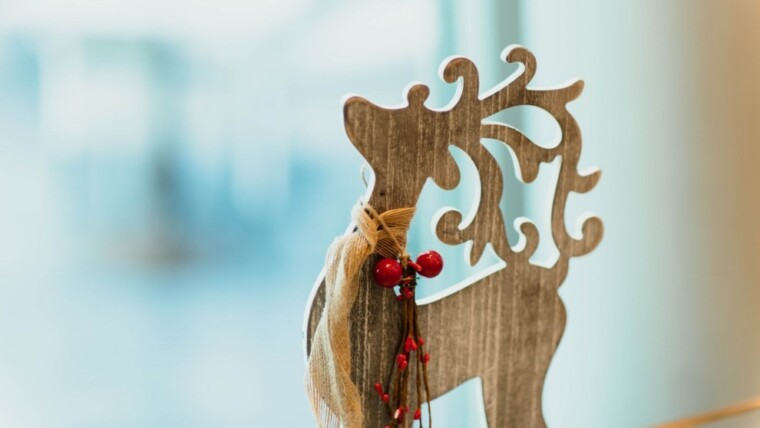 Merry Christmas Wishes -Moonzori